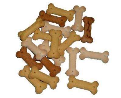 Des biscuits pour chien