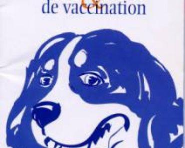 Un exemple de carnet de santé