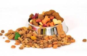 Aliment préparé pour chien